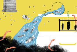 A lighthearted, colorful, chaotic lab scene with fruit flies flying in formation, worms peeking out of piles of dirt and zebrafish spilling out of beakers.