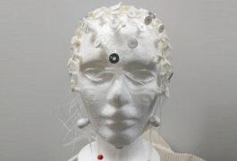 electrode cap on a styrofoam head model.