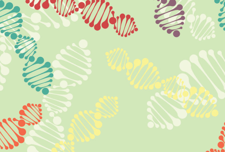 Modifier genes may enhance or diminish the effects of a mutation linked to autism.