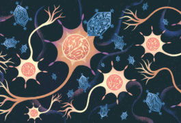 An illustration shows a mosaic-like view of viruses delivering genes to the brain.