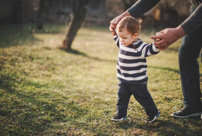 A boy toddler learns to walk with an adult holding his hands.