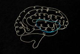 线程组成的大脑显示彩色螺纹中的OCD循环