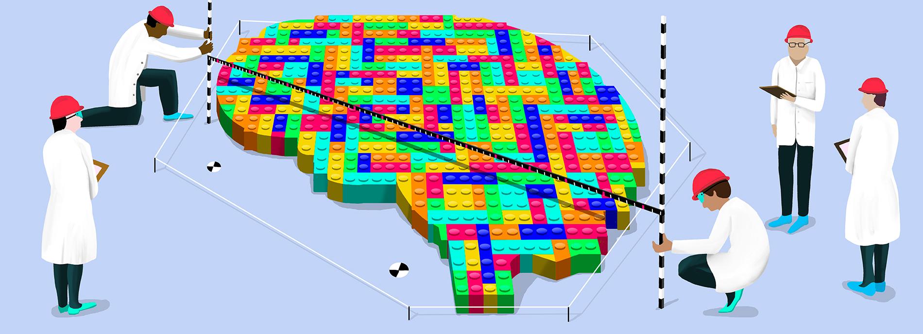 researchers are measuring a big lego brain