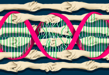 linked hands in a pattern intertwined with DNA showing some broken parts, symbolizing mutations