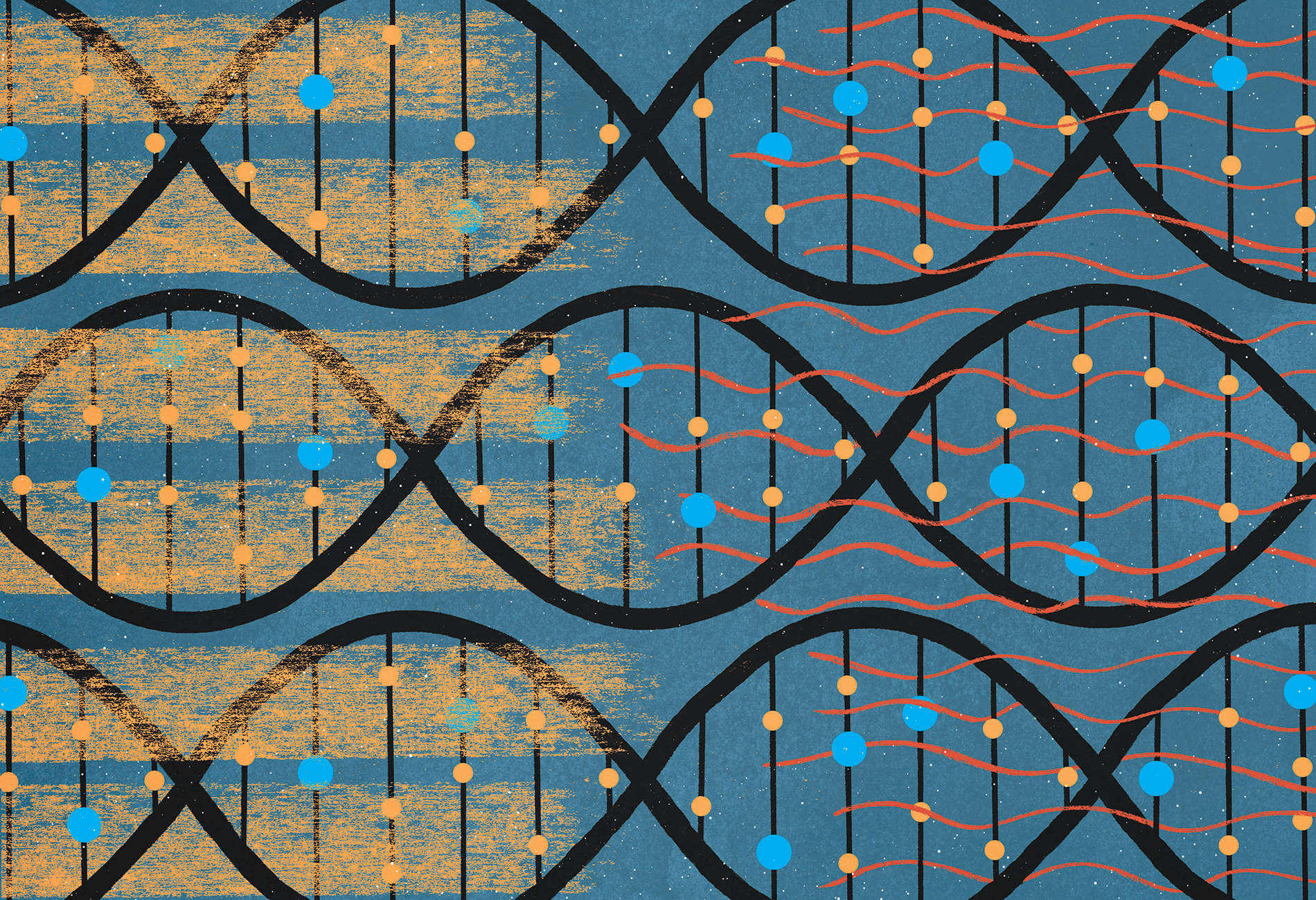 illustration shows DNA strands underneath overlapping textures, signifying blurred lines