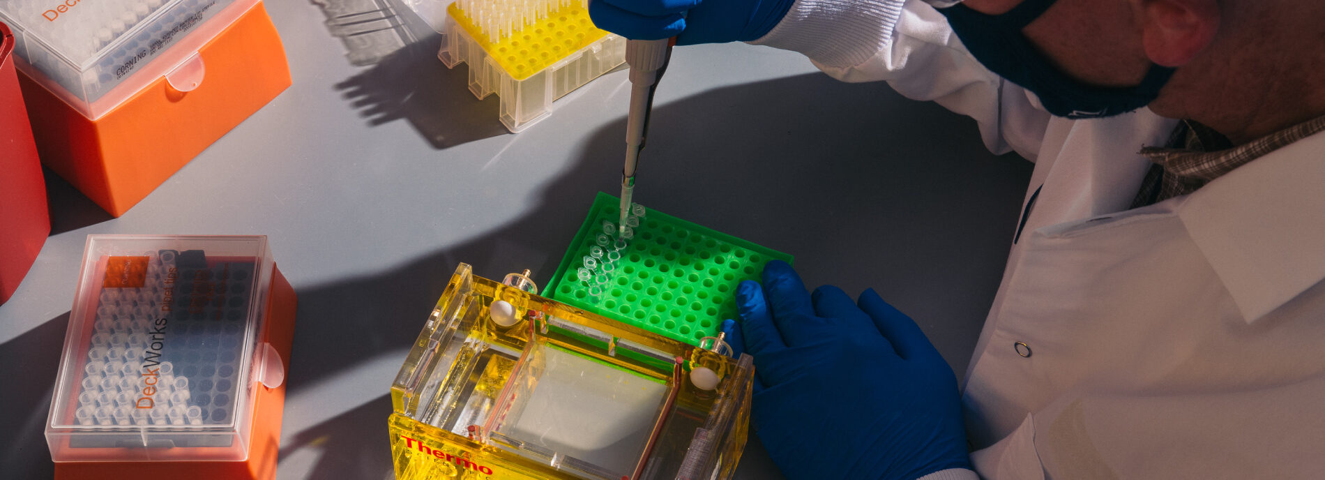 Ralf Schmid, the research director in Neurodevelopmental diseases at the Gene Therapy Program Orphan Disease Center, loads replicated mouse dna into wells in the gel before applying electric current to test the viability of the dna.