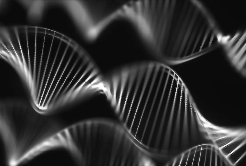 Group of DNA helixes are seen on black
