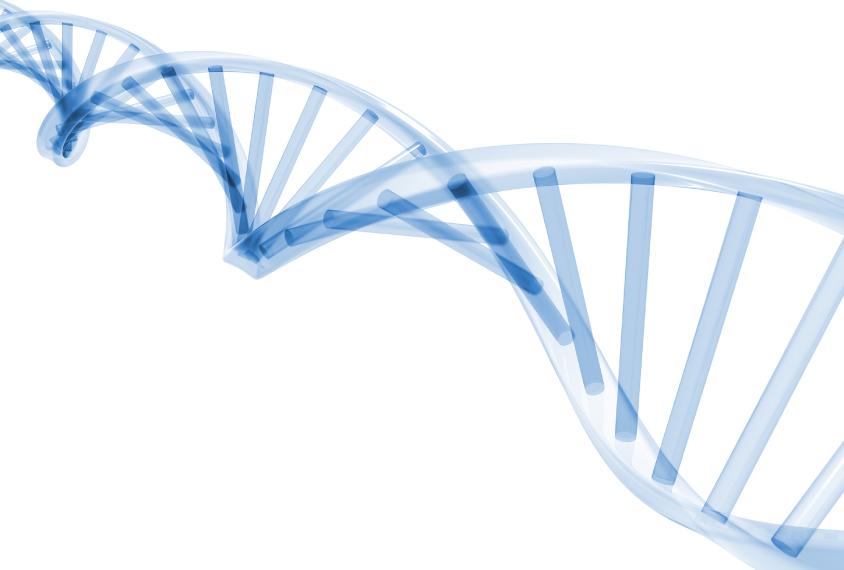 Stylized DNA molecule