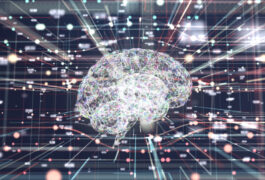 human brain lights up with connections within a network