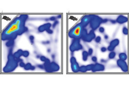 Heat map of mouse activity.