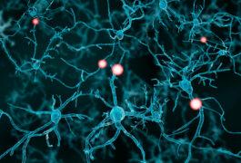 Illustration of firing neurons.