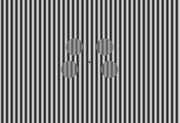 视觉刺激4个黑白条纹的圆圈。