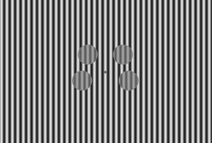 Visual stimulus of 4 circles with black and white stripes.