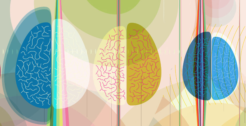 brains of different sizes in colorful, radiant space with echoing shapes