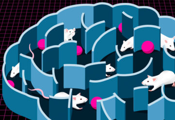 Illustration of transporter mice in brain maze
