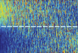 Mouse neuron recordings showing different levels of activity before and after an encounter with an unfamiliar mouse.