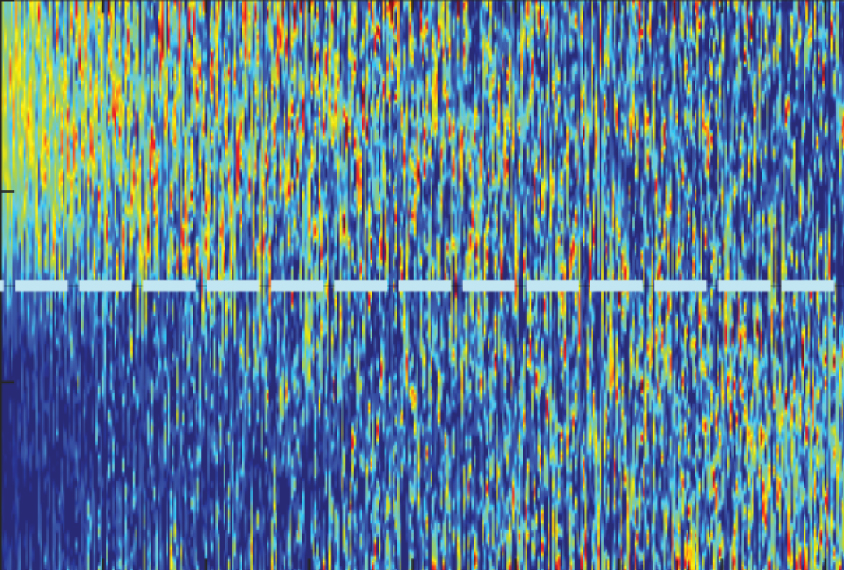 Neural network captures noisy neurons in autism mouse model