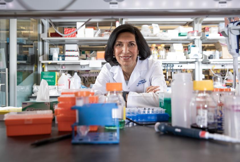 Dr. Huda Zoghbi in her lab.