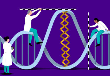 researchers analyzing a big change in a DNA helix