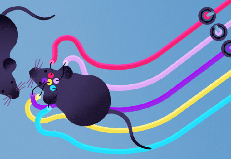 Illustration shows mouse with colorful wires attached, interacting with another mouse.