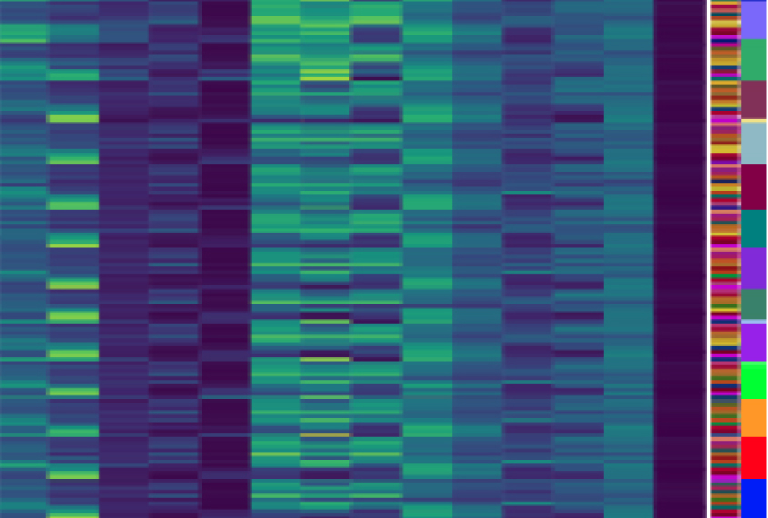 Mutations in the noncoding genome contribute to autism