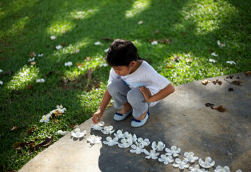 Child makes a row of flowers on the ground.