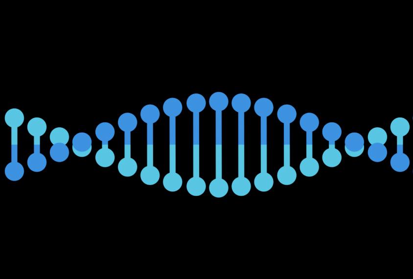 Autism-linked genetic variants increase, decrease intelligence